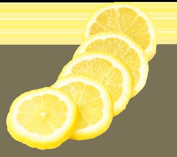 Sorgin & Francois Lurton - Les caractéristiques du Gin Sorgin - Citrons